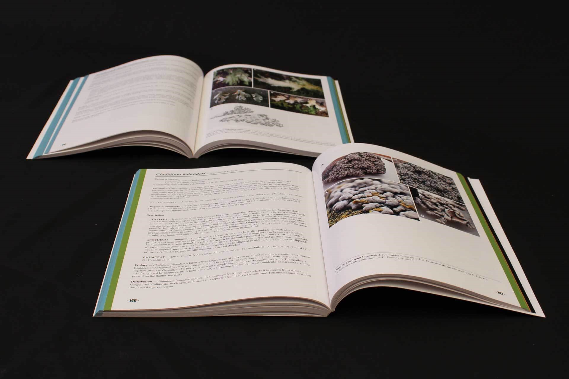 Oregon BLM Book Design Project Blue Green Book